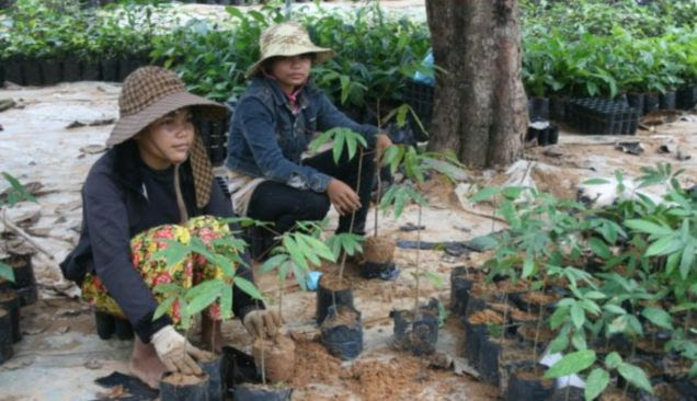 Village life: Local women get down to some planting