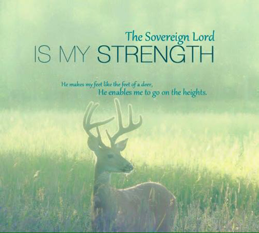 [Photo of a deer with words superimposed]