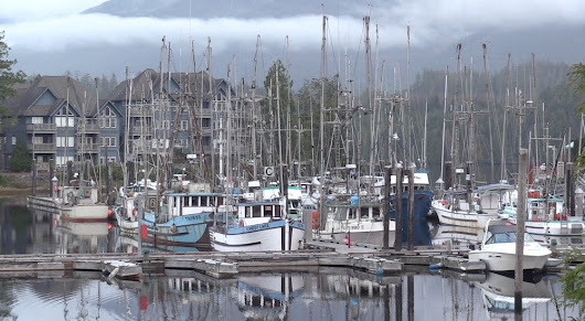 Episode 8: Ucluelet