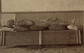 File:Solid Muldoon Stereoview (cropped2).png