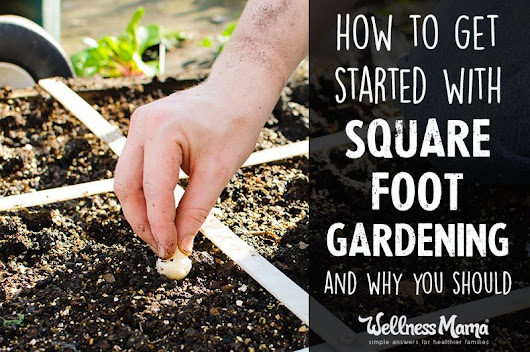How to Get Started with Square Foot Gardening (and Why)