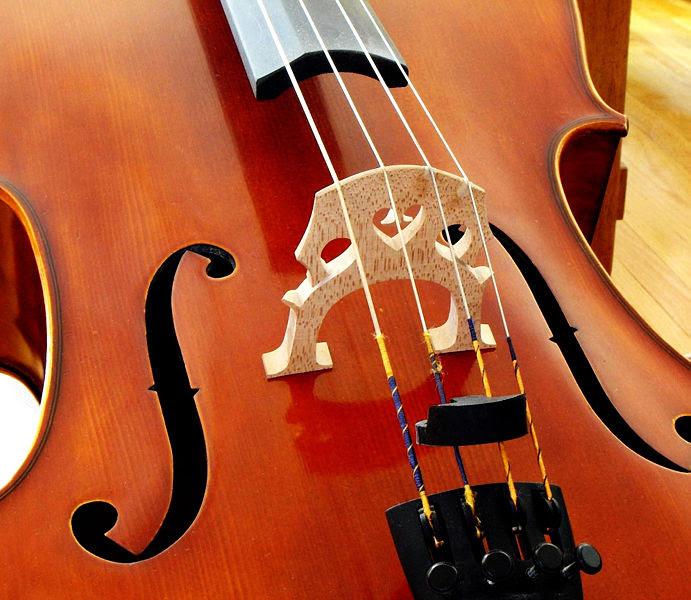 Ficheiro:Cello bridge edit.jpg
