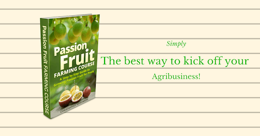 It's time to kick of your Agribusiness with our free eBook: