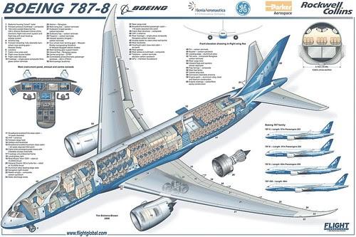 Airplane Pics Boeing 787 Cutaway Layout Plan