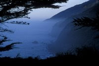 Big Sur - Ragged Point