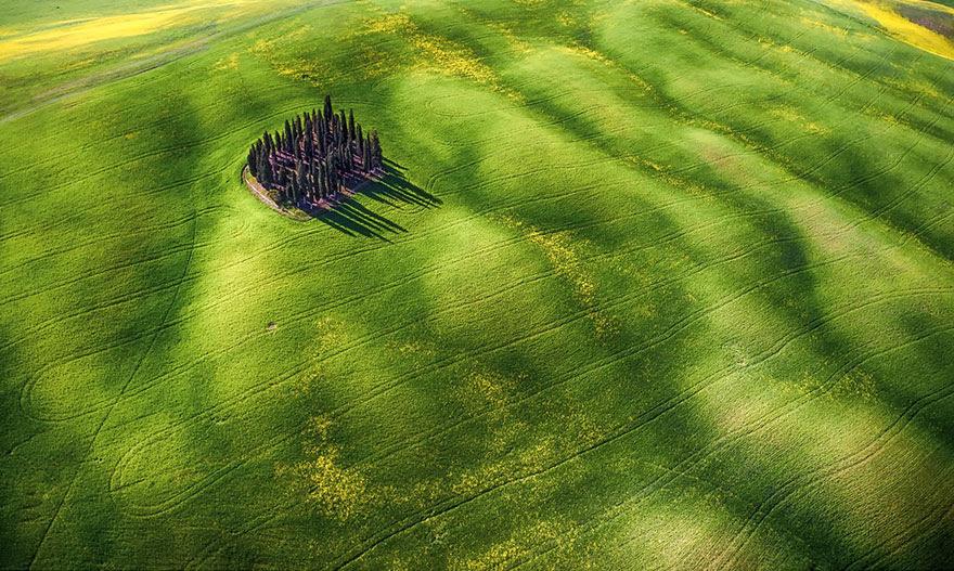 #4 Yeşil dalgalar, meraklı güzellik kategorisinde ikinci ödül