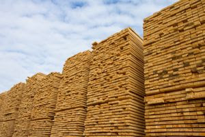 Lumber Liquidators to pay $13.2 million in sourcing fines