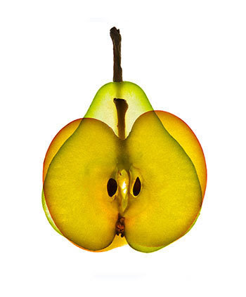 apple-or-pear