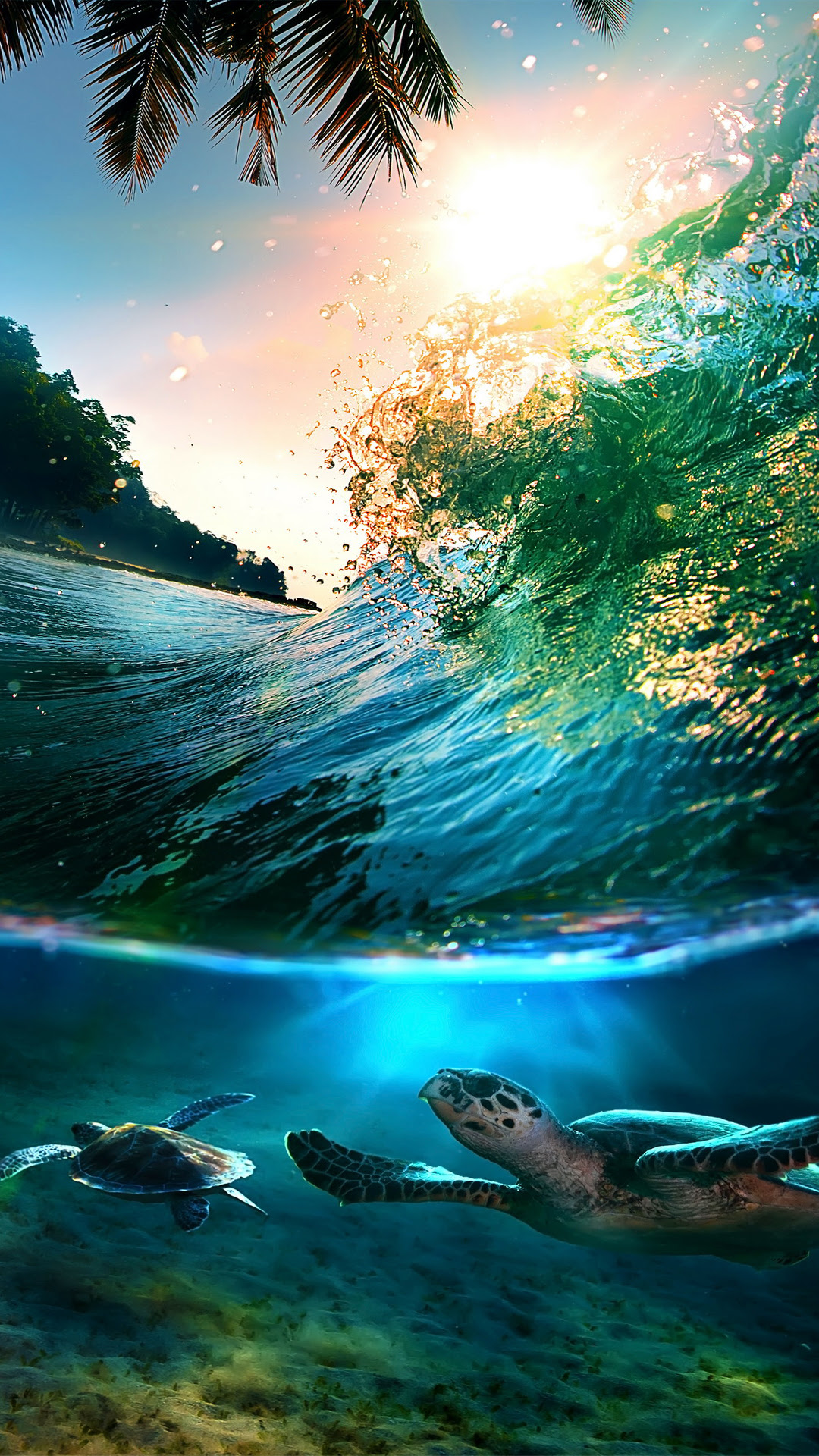 Tropical Sea Island Turtles - Best htc one wallpapers