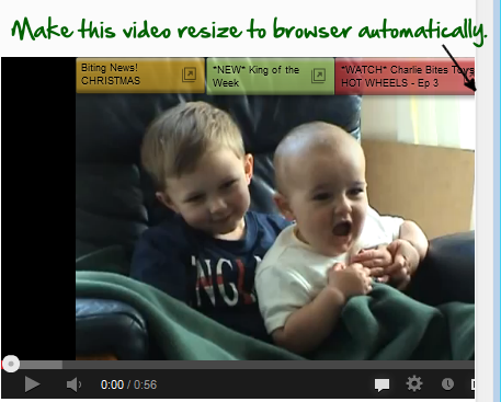 Make YouTube Videos Auto-Resize in a Responsive Site Layout.