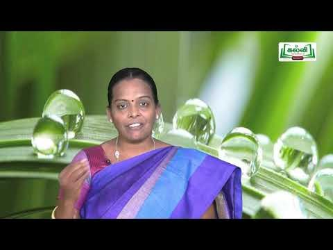 ஆய்வுக் கூடம் Std 8 Science Force And Pressure Part 02 Kalvi TV