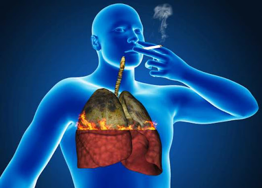 12 Ways to Keep Your Lungs Strong and Healthy