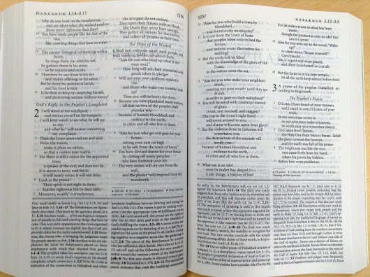 how to use olive tree bible study