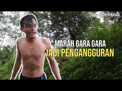 Dimasa Pandemi, Ijazah ku Ngajak Komedi !! By Bocah Kampungku (Content Creator Desa Wonopringgo)