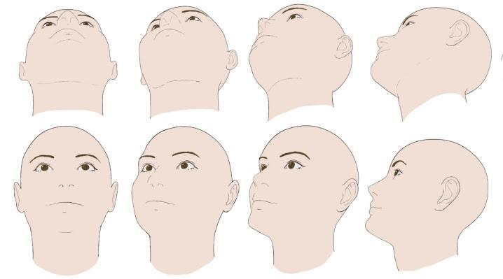 デッサンイラストにトレスして使える顔フリー素材30初心者向け顔