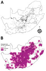 Thumbnail of Historic sites of Rift Valley fever (RVF) outbreaks in South Africa from 1950 through 2011 (A) and a base map indicating areas at low, moderate, and high risk for an outbreak (B). Each dot in panel A represents a RVF outbreak. The base map in panel B was created by an interpolation method based on the distance from historic sites: high risk (<20 km), moderate risk (>20 km to <40 km), and low risk (>40 km).