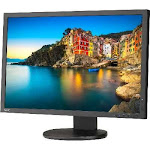"P243W-BK - NEC 24"" Professional sRGB Gamut Desktop Monitor"