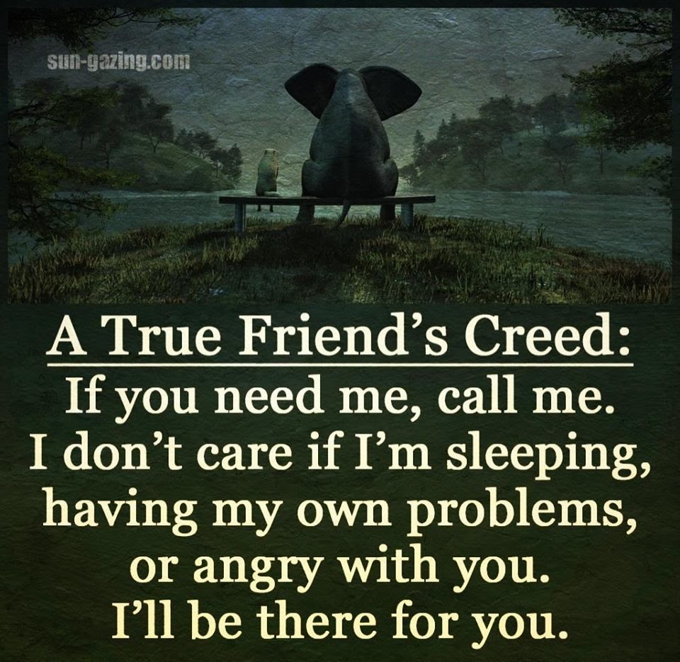 A True Friends Creed Pictures Photos And Images For Facebook