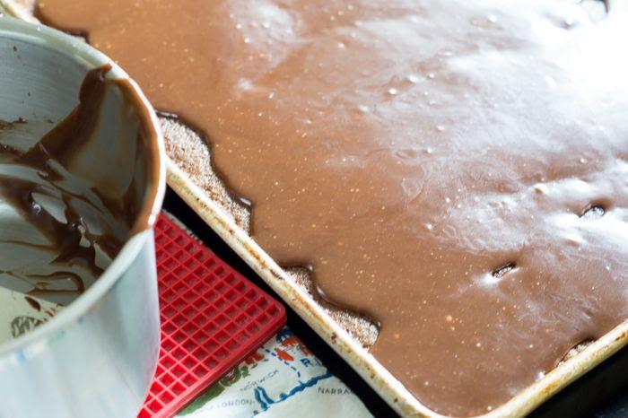 Chocolate Malt Texas Sheet Cake