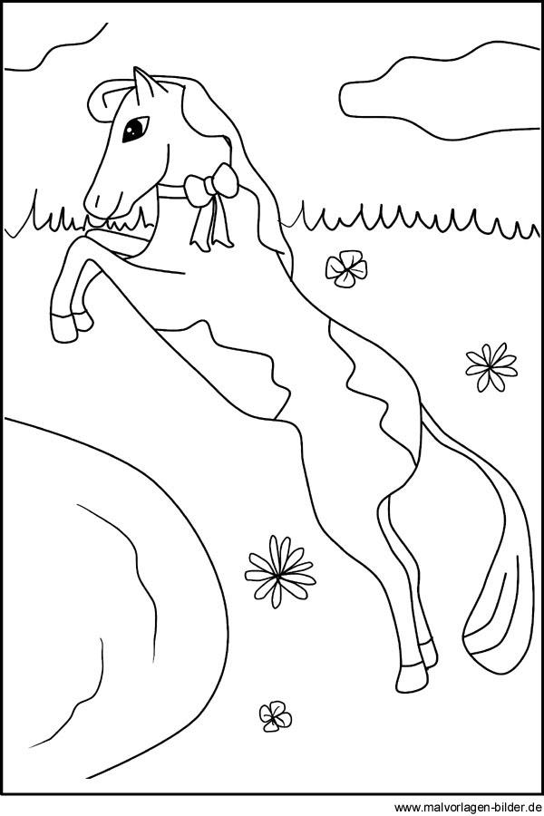 Ausmalbild mit einem tollen Pferd