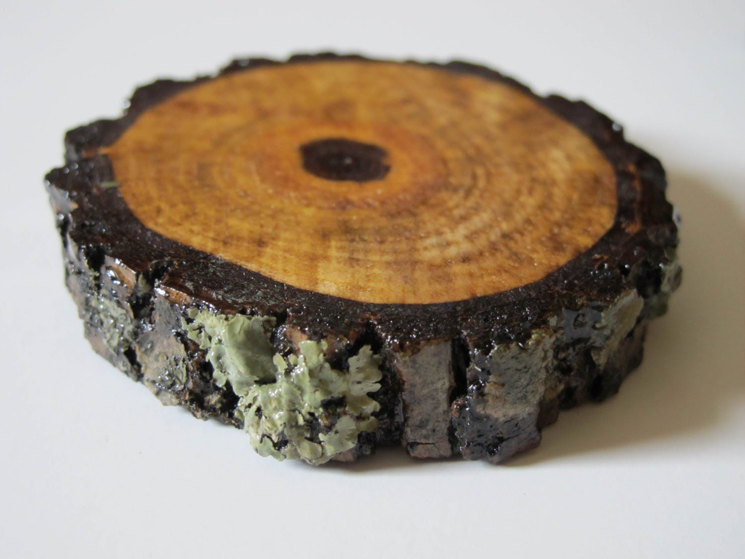Set of Four Natural Wooden Coasters- Handmade from Salvaged Black Walnut- Recycled Felt Bottom