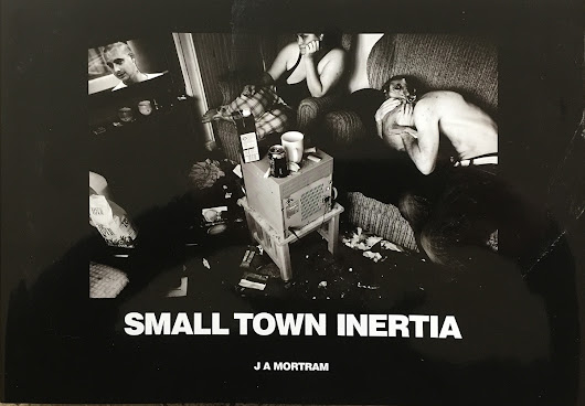 Book Review: Small Town Inertia