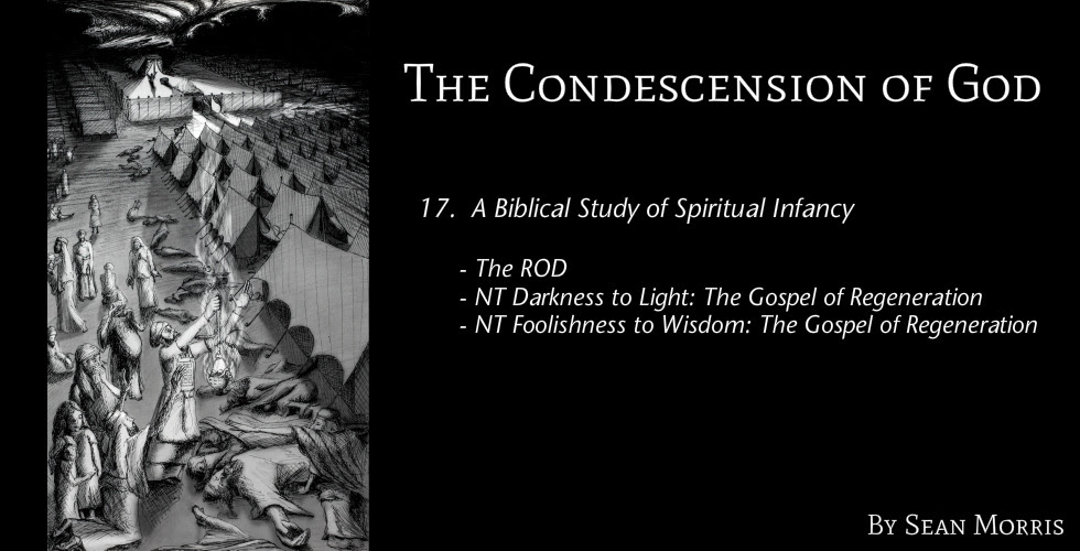 17 A Biblical Study Of Spiritual Infancy The Condescension Of God
