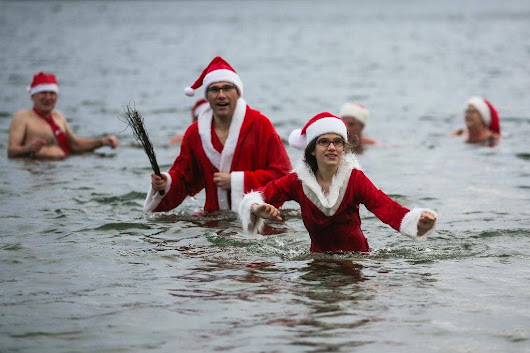 Swimmers brave cold for Berlin Christmas swim