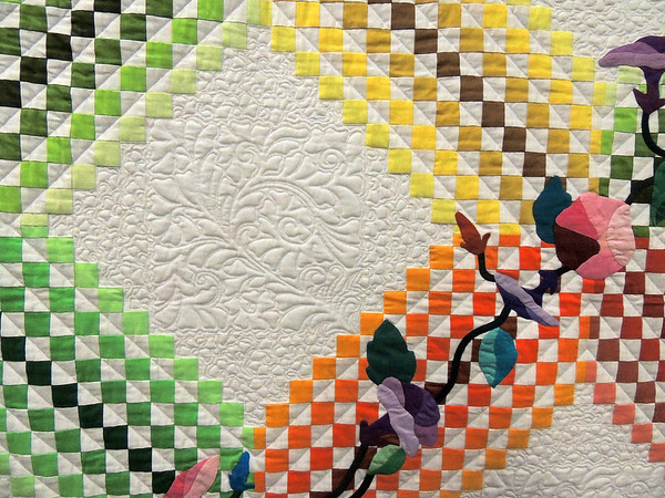 Detail of Complex Irish Chain by Beth Nufer, Best Use of Color