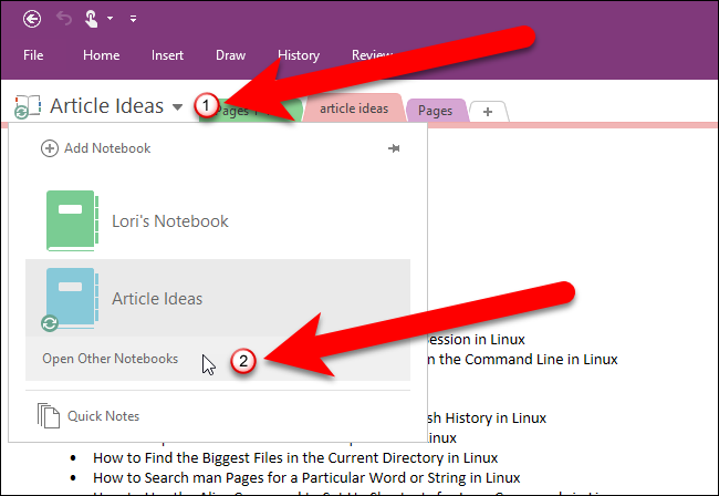 List the imported notebooks, Evernote to OneNote.