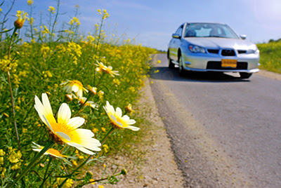 Car Preparation Tips for Spring