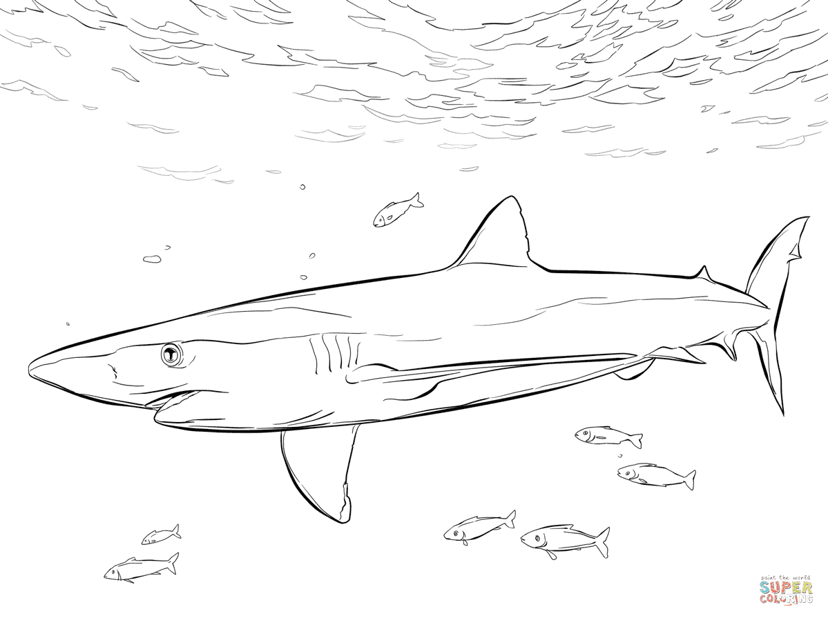 Blue Shark with Pilot Fishes coloring page | Free ...