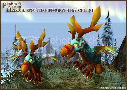 Postcards of Azeroth: Spotted Hippogryph Hatchlings, by Rioriel Ail'thera