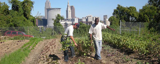 Cleveland Crops: Training People with Disabilities to Farm | Civil Eats