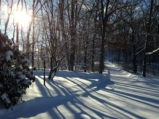 Our Winter Services | Vin's Total Care Landscaping