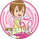 "Digimon Adventure Magnet Sticker ""Hikari (Kari Kamiya)"" /"