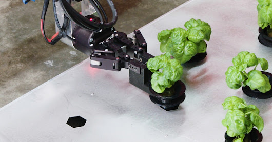 Iron Ox Brings Robotics to Hydroponic Greenhouse Farming | WIRED