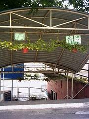 Kuen Cheng's canteen