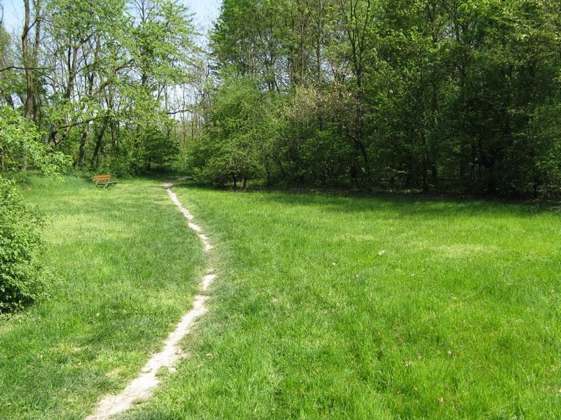 sentiero prato