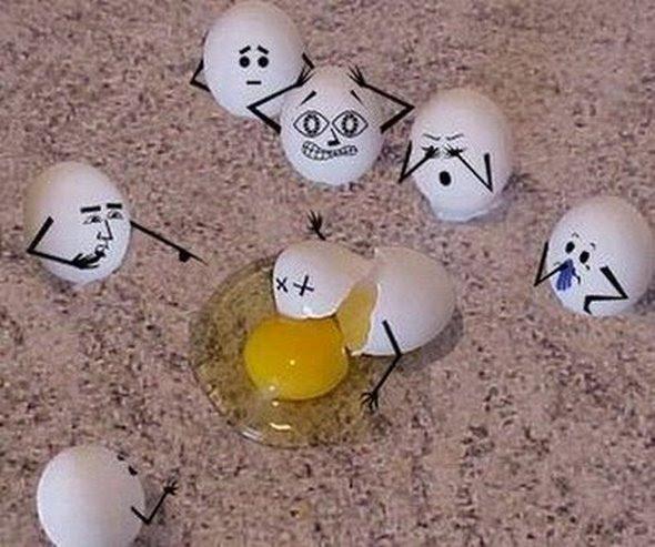 Wonders of Egg Art
