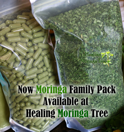 BULK 1000ct Moringa Family Pack Leaf Capsules Large 700 mg (Organic) (SALE)