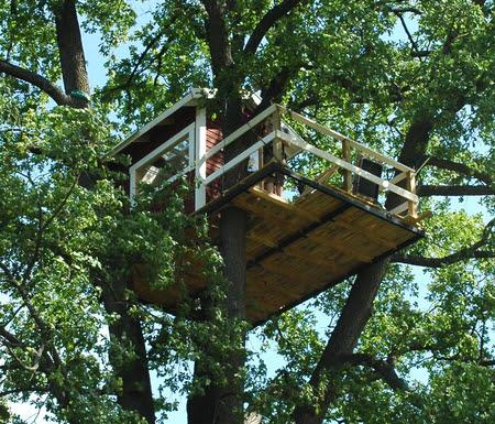 Home Interior Design on Tree House Plans Interior Design Software 2d 3d Home Design