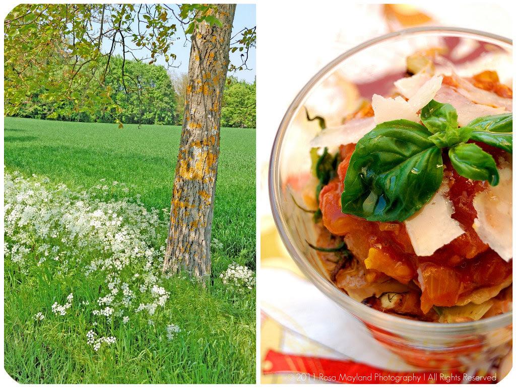 Chickpea Salad Picnik collage 3 bis