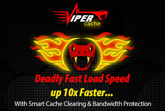 Superior Cache Technology with Bandwidth Protection for WordPress