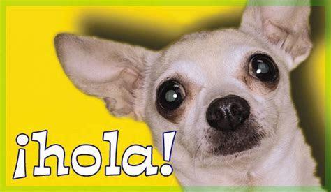 Español, Hola   Free Christian Ecards, Greeting Cards