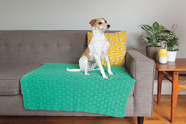 Comfort Knit Pet Blanket - Free Knitting Pattern