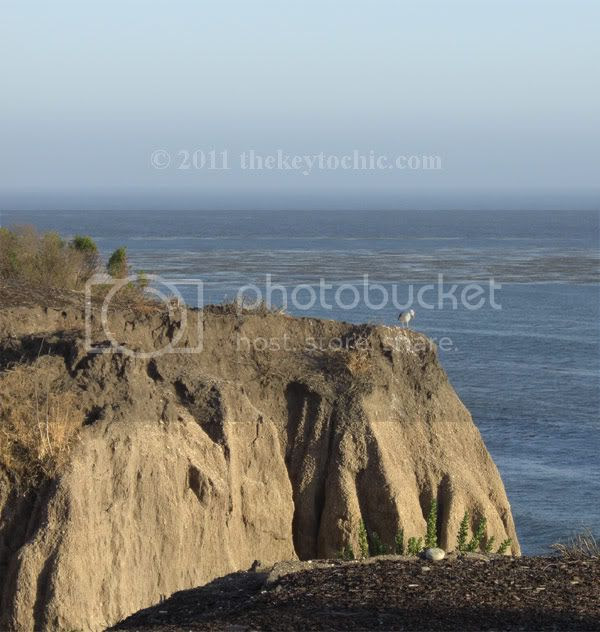 Pismo beach cliffs