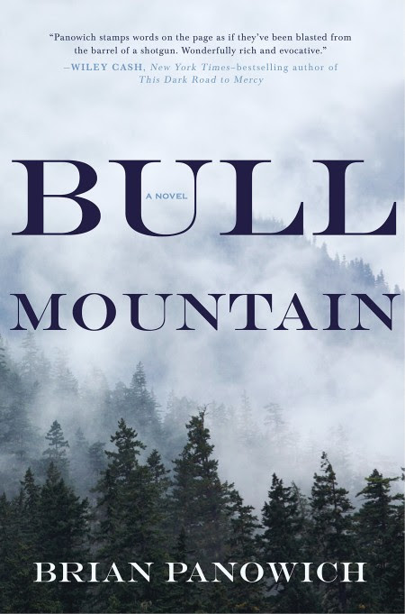 Image result for brian panowich bull mountain