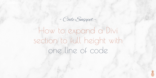 How to expand your Divi standard section to full height with one line of code - Designerless
