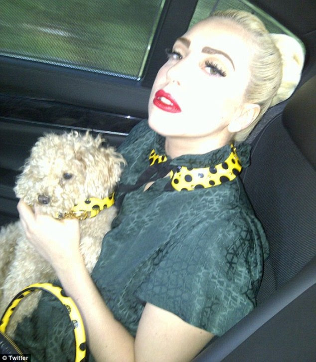 Strike a pose: Gaga tweeted a snap of herself posing with her pet pooch